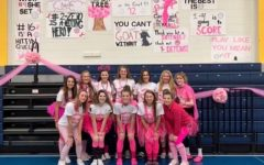 A Volley for the Cure Victory